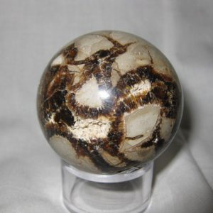 Cretaceous Age Fossil Septarian Nodule Sphere from Madagascar