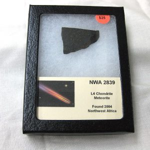 Genuine Sliced Meteorite Specimen from Northwest Africa