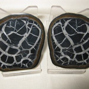 Genuine Cretaceous Age Septarian Nodule Pair from Morocco North Africa